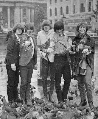 byrds 1965